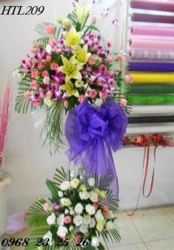 hoa htl209