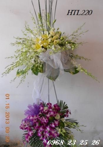 hoa htl220