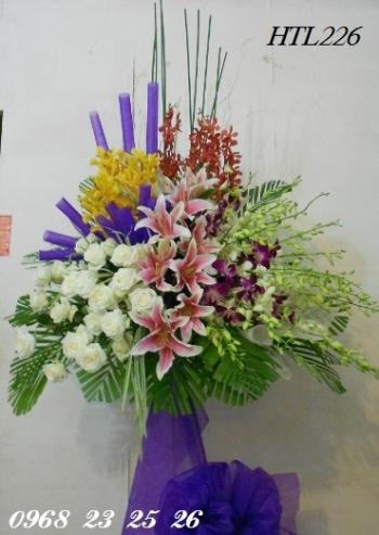 hoa htl226